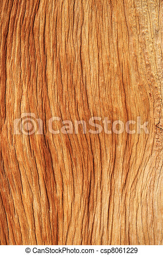 eroded wood grain - csp8061229