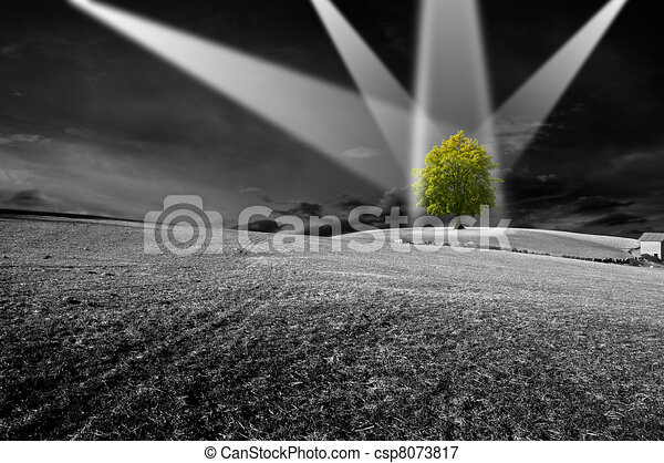 Environment - csp8073817