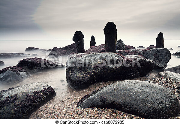 On shore of the Baltic Sea. - csp8073985