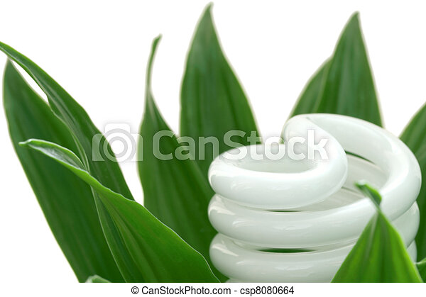 Energy saving light bulb on green plant - csp8080664