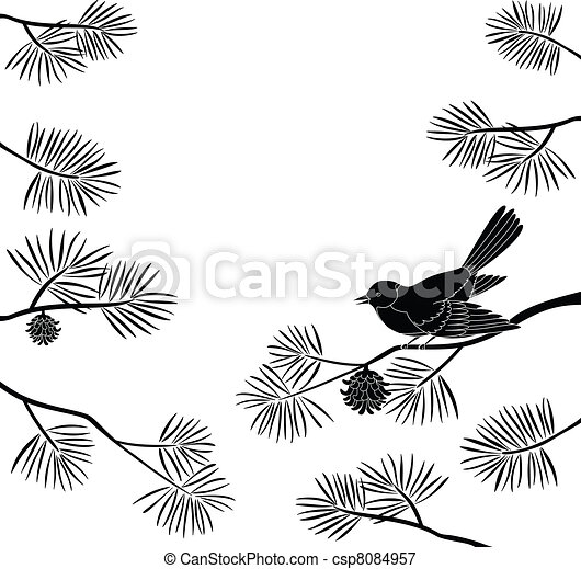 Titmouse on pine branch, cutout - csp8084957