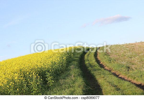 farming ground