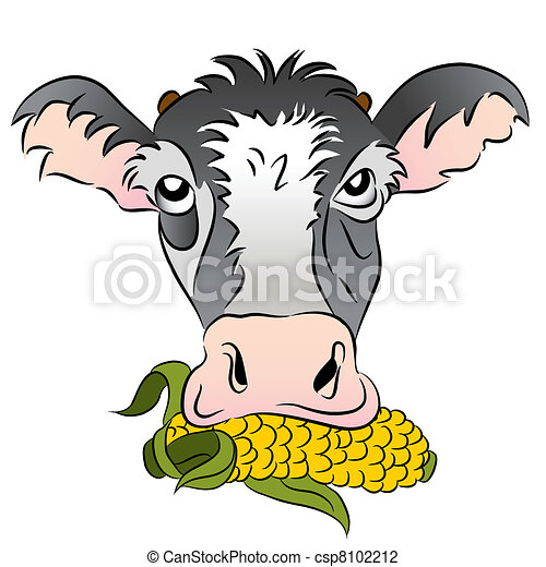 Corn Fed Cow - csp8102212