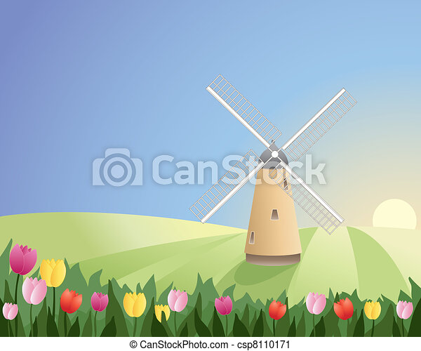 windmill with tulips - csp8110171