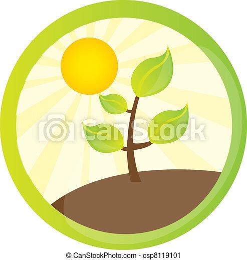 plant with landscape - csp8119101