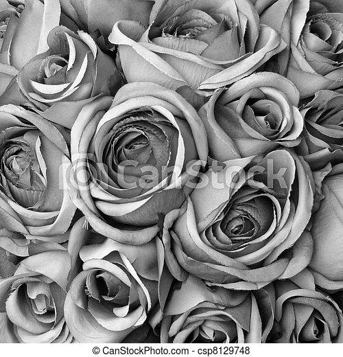 images de roses blanc noir fond fond roses dans noir et csp8129748 recherchez. Black Bedroom Furniture Sets. Home Design Ideas