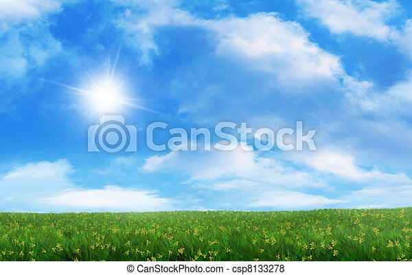 Grassy Field - csp8133278