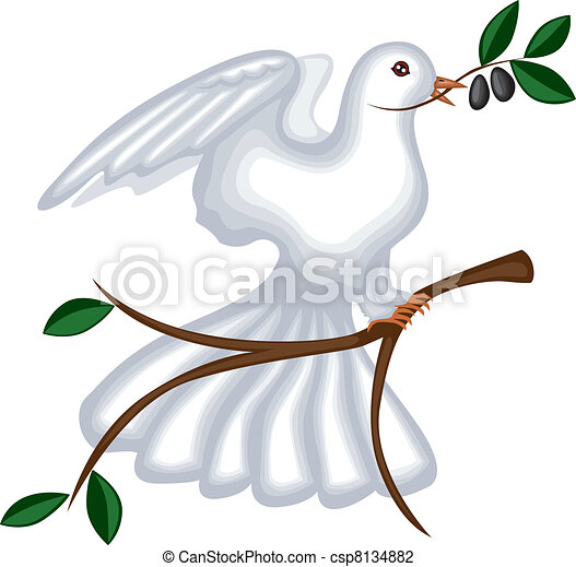 The dove with olive branch - csp8134882