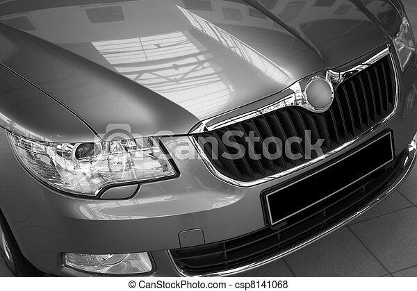 motor-car headlight and grate of radiator - csp8141068