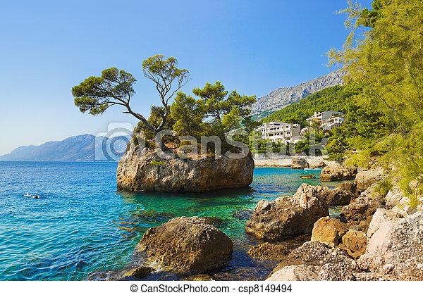 Island and trees in Brela, Croatia - csp8149494