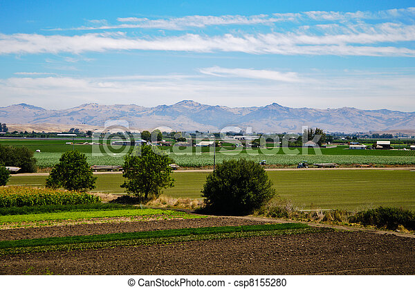 Agriculture Farm in California - csp8155280