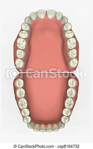 dentale, grafico - csp8164732