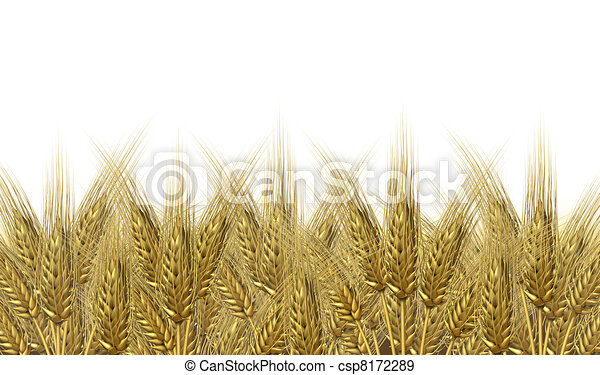 Wheat harvest horizon - csp8172289