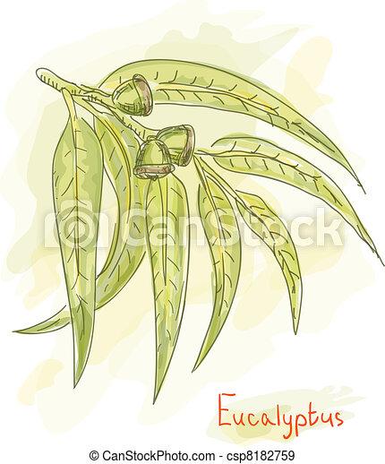 Eucalyptus branch. Watercolor style. - csp8182759