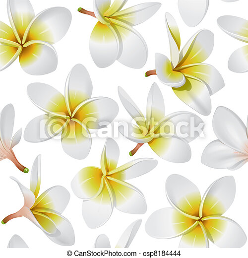 Plumeria Flower Line Drawing Tropical flowers seamless