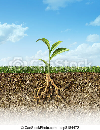Cross section of soil with grass and a green plant in the middle, with its roots. - csp8184472
