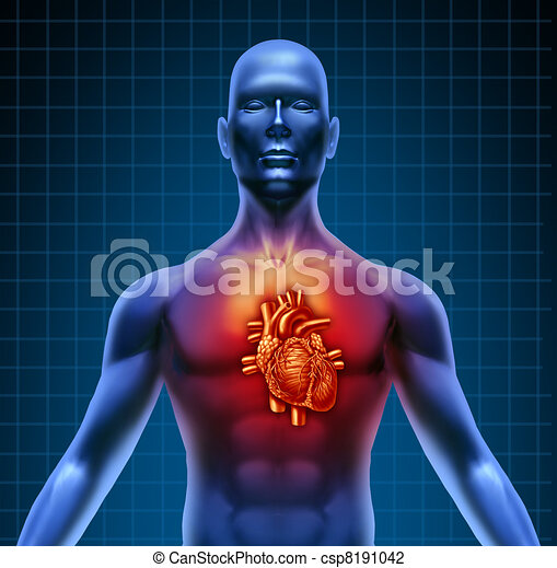 Human Torso With Red Heart Anatomy - csp8191042