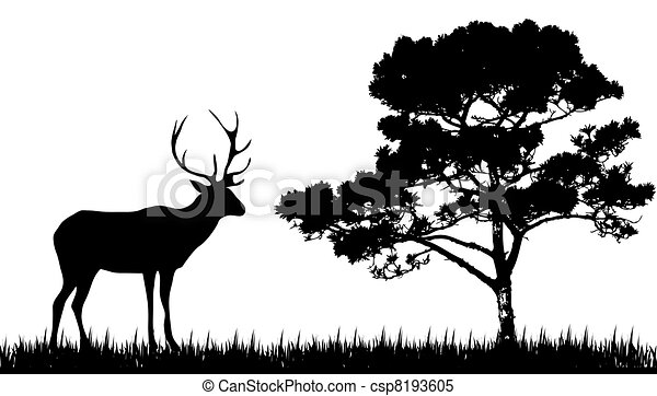 silhouette of  deer and tree - csp8193605