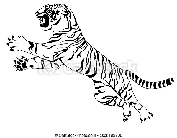 White tiger - csp8193700