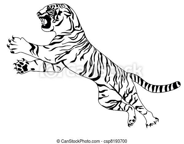 Clipart vecteur de tigre blanc white tigre csp8193700 - Tigre blanc dessin ...