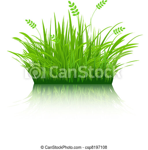 Eco Grass - csp8197108
