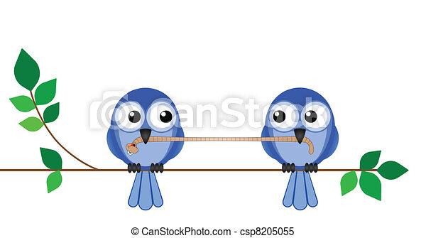 Birds Lunch - csp8205055