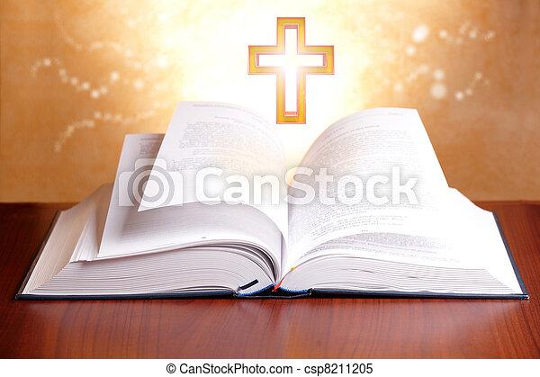Holy bible - csp8211205