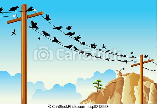 Birds sitting on Wire - csp8212553