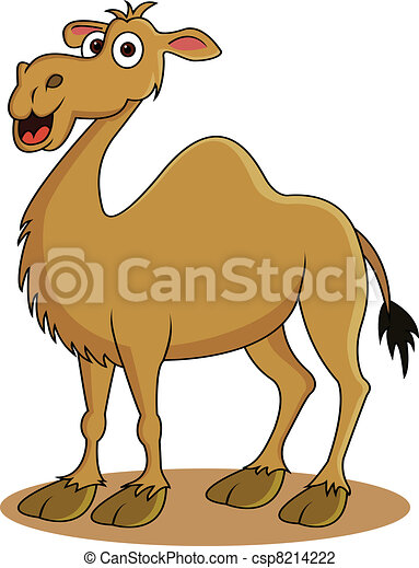 funny camel cartoon - csp8214222