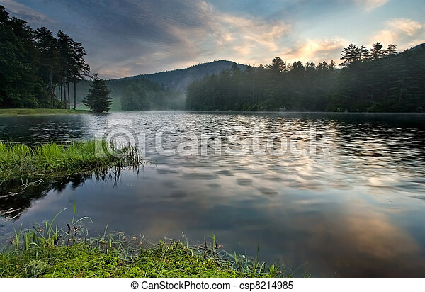 Mountain lake sunrise in lush forest - csp8214985