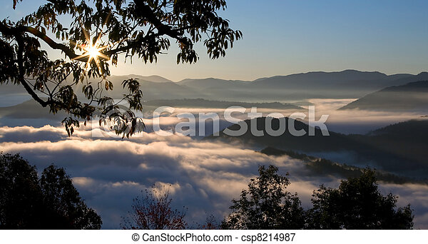 Foggy Sunrise in Great Smoky Mountains - csp8214987