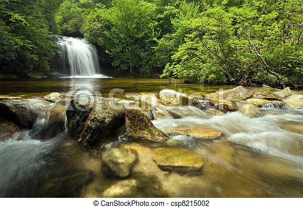 Beautiful waterfall in lush rain forest - csp8215002