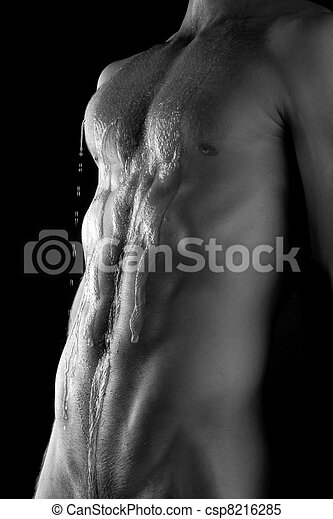 torso, muscular - csp8216285