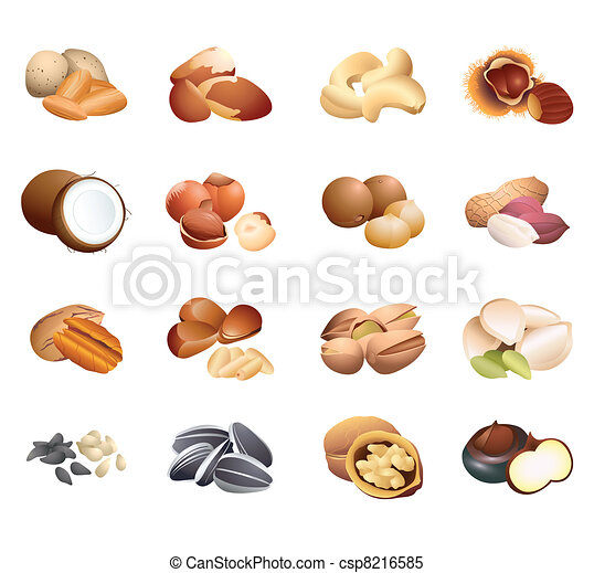 Calorie table nuts and seeds - csp8216585