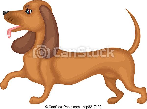 Dachshund dog - csp8217123