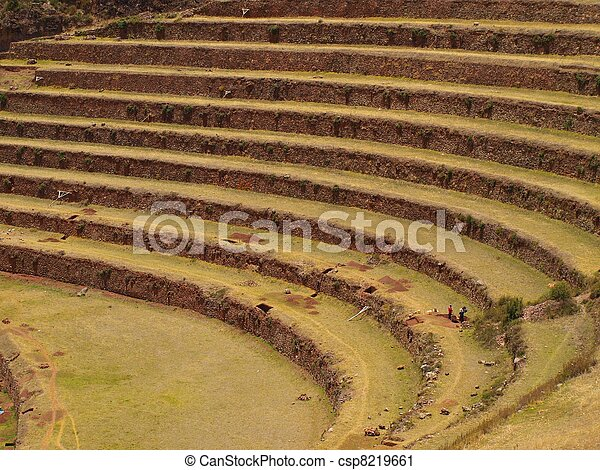 Inca agriculture terraces in Peru - csp8219661