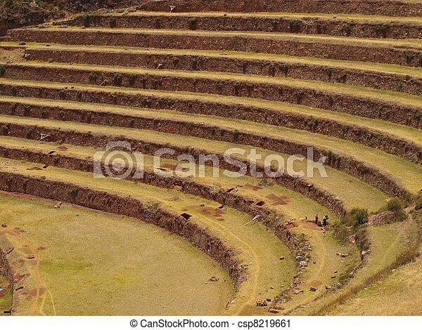 Inca agriculture terraces in Peru - csp8219661