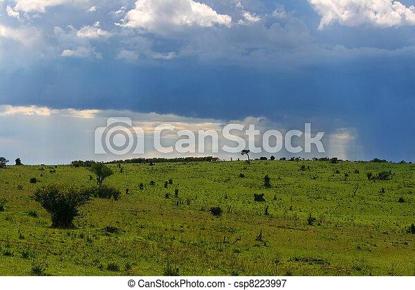 Overcast cloudscape - csp8223997