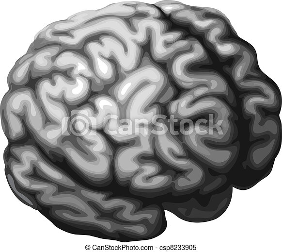 Brain illustration - csp8233905