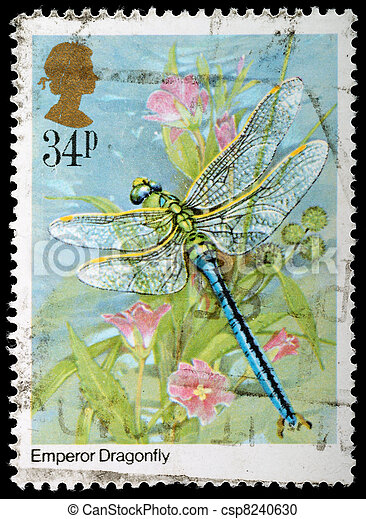 Insect Postage Stamp - csp8240630
