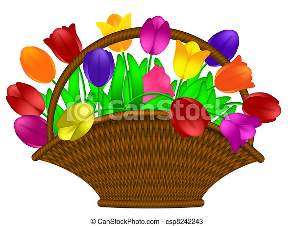 Basket of Colorful Tulips Flowers Illustration - csp8242243
