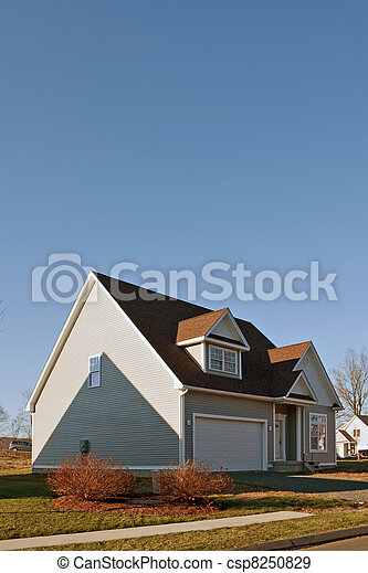 Newly Constructed Home with Two Car Garage - csp8250829
