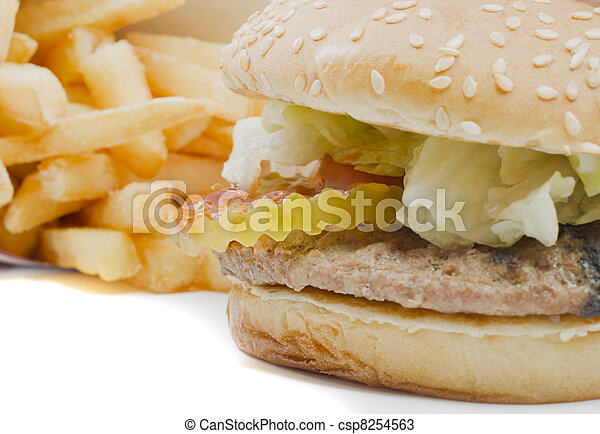 Burger and Fries - csp8254563