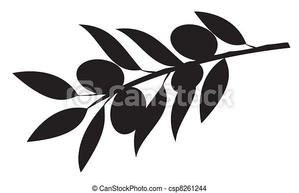 Olive branch - csp8261244