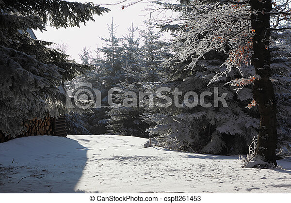A Christmas Day. Snowy cozy ski hotel - csp8261453