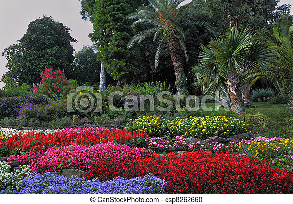 Wonderful bright flowerbeds  - csp8262660
