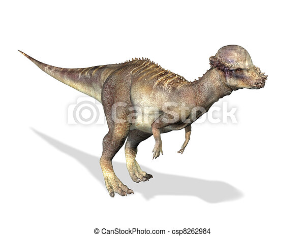 Photorealistic 3 D rendering of a Pachycephalosaurus. - csp8262984