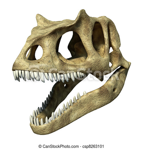 Photorealistic 3 D rendering of an Allosaurus skull. - csp8263101