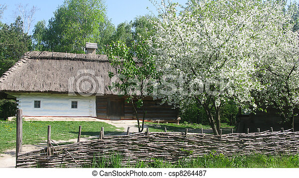 Ukrainian country. Wooden house. Wattled fence. - csp8264487