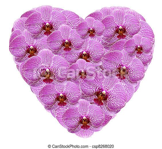 Photographies de coeur forme fait rose orchid e fleurs isol blanc - Fleurs en forme de coeur ...